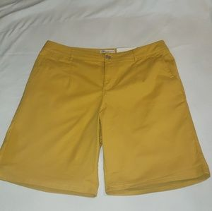 Cato plus size yellow shorts New With Tags